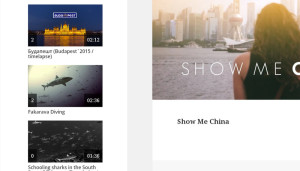 Easily show up your imported videos through widgets.